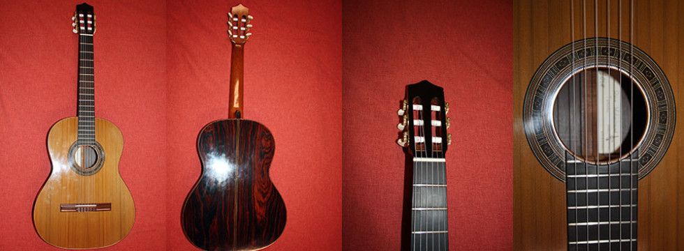 Custom Guitar Made by Mohammadreza Isfahaninejad